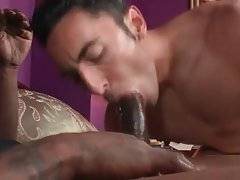 Craving guy sucks some dick before getting pounded.